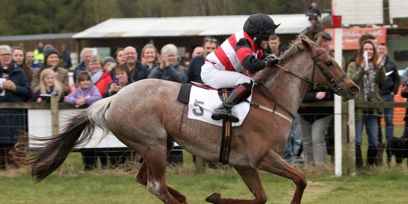 Rosie (Push the Button) wins race final at Garthorpe