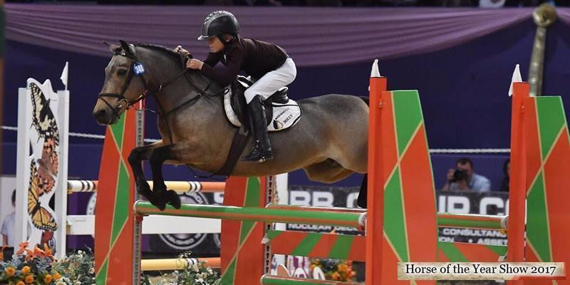Horse of the Year Show update